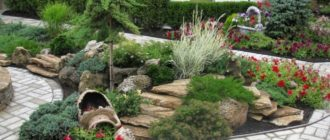 Ландшафтный дизайн двора частного дома + фото