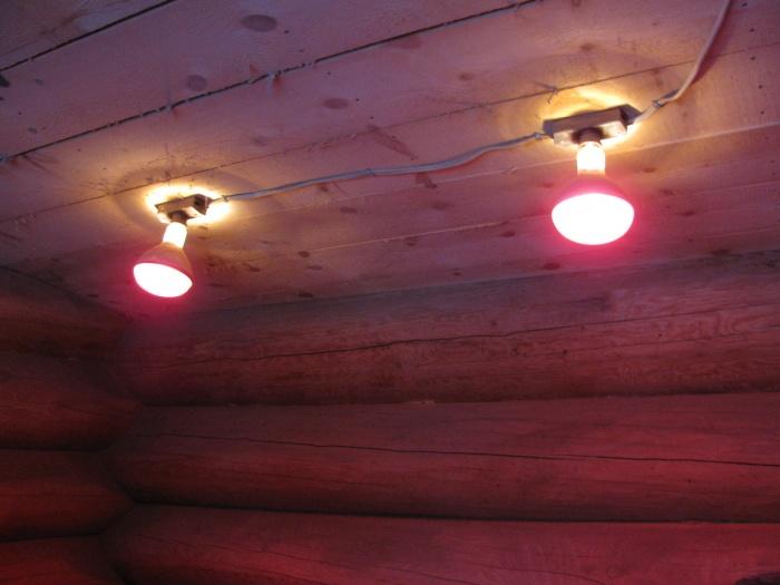 Красная лампа для курятника