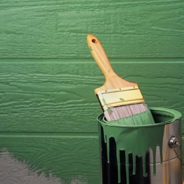Краска для стен из дерева