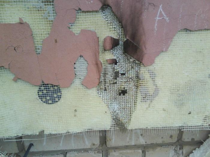 Пеноплекс и муравьи