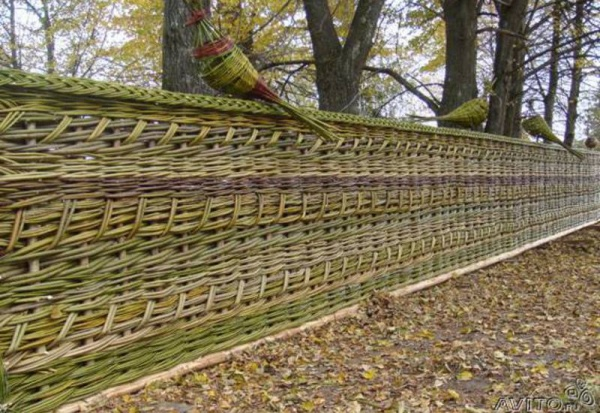 Как сделать плетеный забор своими руками из лозы + фото и видео